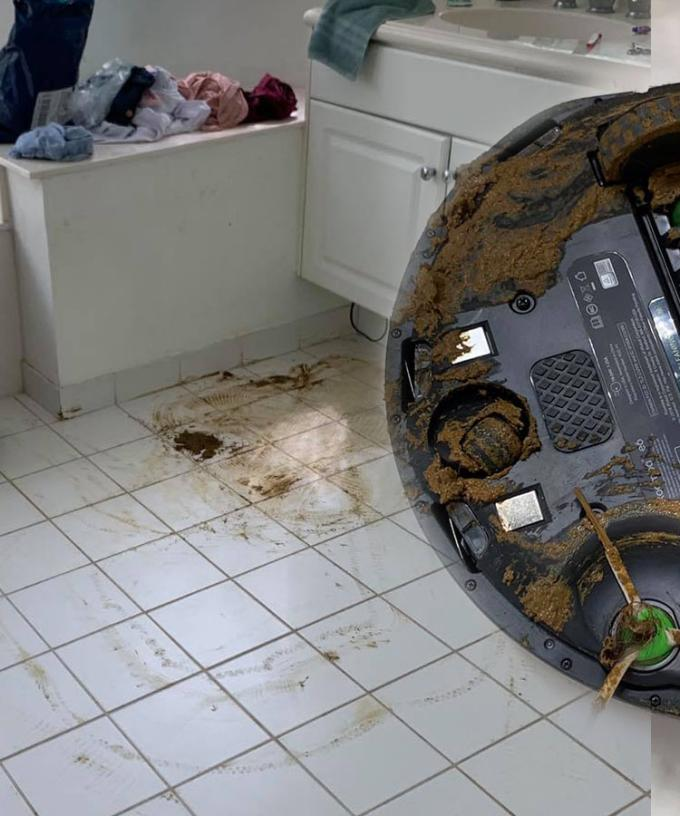 Man's Roomba Runs Over Dog Poo, Spreading It Throughout ...