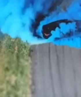 Car Bursts Into Flames After 'Gender Reveal Burnout'