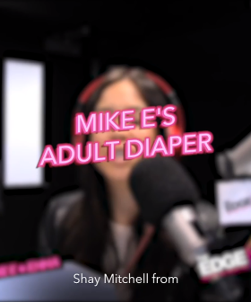 Mike E's Adult Diaper