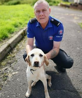 First Aid Volunteer Uses CPR Skills To Save Pet Dog