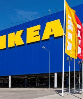Police Stop Huge Game Of Hide-And-Seek At IKEA
