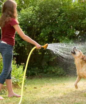 New Water Restrictions For Greater Sydney