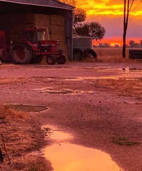 Drought Stricken Aussies Share Photos Of Them Celebrating As Rain Finally Falls