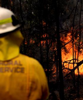 Heatwave Brings More Bushfire Danger To NSW