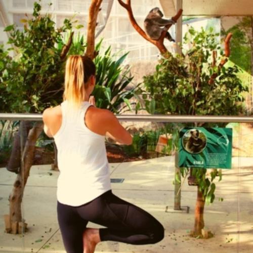 You Can Do Yoga Amongst The Koalas In Sydney To Raise Money For Injured Wildlife
