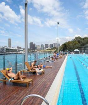 Five Pools Around Sydney Will Be Open For FREE Tomorrow