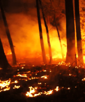 Grave Fears That Two 'Huge Bushfires' In Victoria & New South Wales Could Now Merge Across State Lines