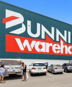 PSA: Bunnings Will LITERALLY Replace Your Dead Plants