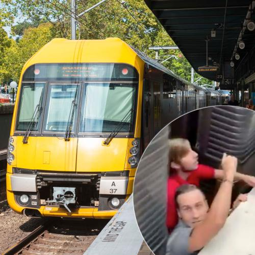 Dramatic Footage Captured Of Moment Toddler Falls Under Train In Sydney's Inner South
