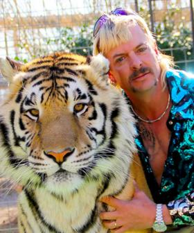 Louis Theroux FINALLY Spills What He Knows About Tiger King's Joe Exotic's SEX LIFE!