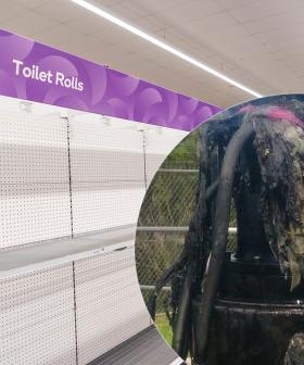 Sydney's Sewers Blocked After People Resort To Alternatives During Toilet Paper Shortage