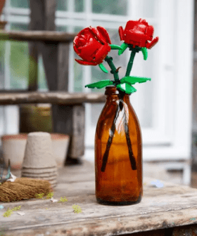 Lego Now Have Floral Kits To Build A Bouquet For Your Loved Ones (Or For Yourself)!