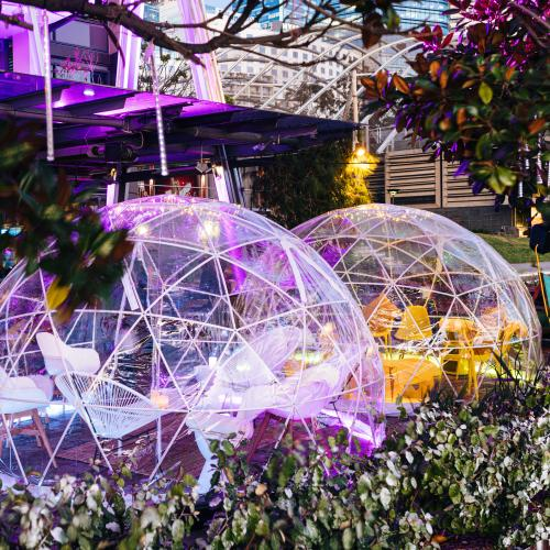 Cargo Bar & The Winery Are Doing Winter Igloos This Season!!