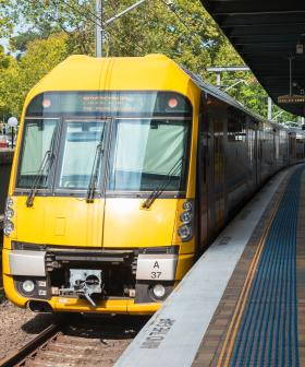 Sydney Public Transport Services Has Been Halved For The Next Fortnight